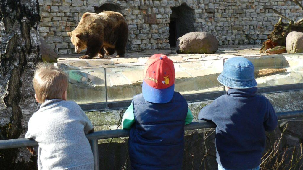 Kinderausflug - Im Zoo